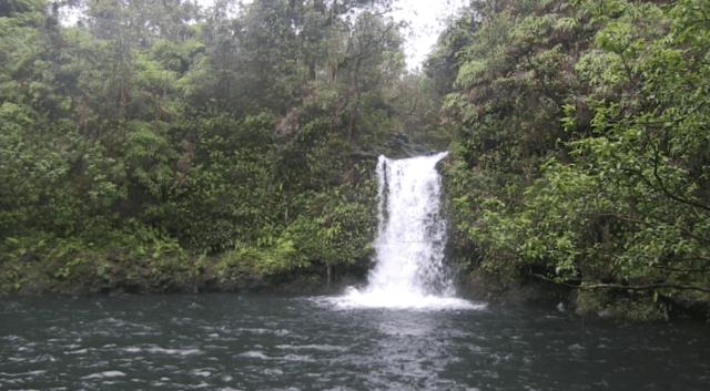 Court Limits A&B East Maui Stream Diversion