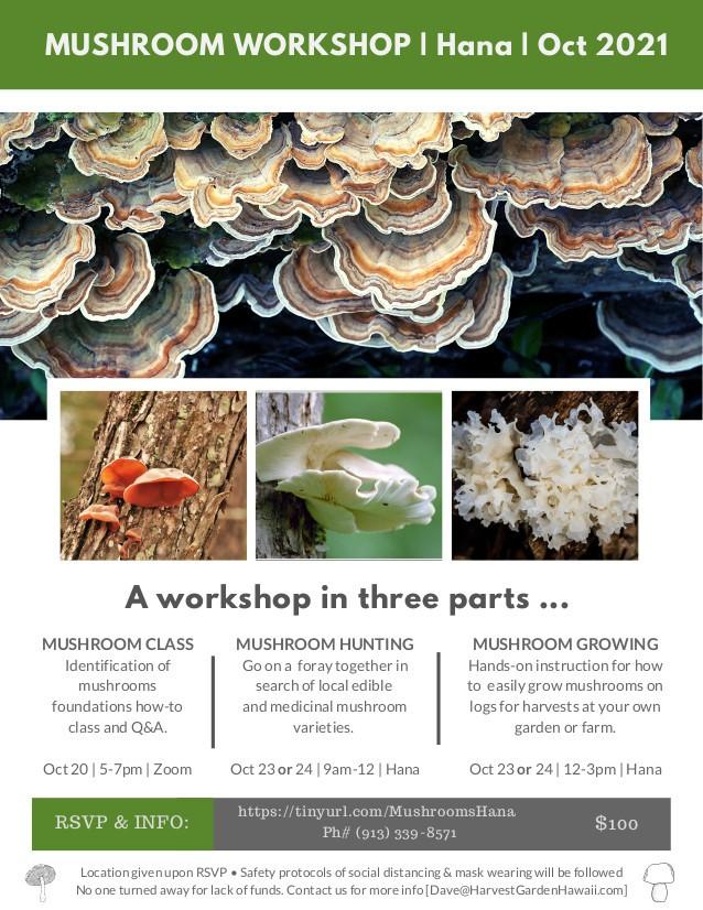 Mushroom Identification Foray & Workshop October 2021